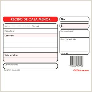 Formato Hoja De Vida Minerva Colombia Contabilidad Y Administraci³n Icina todas