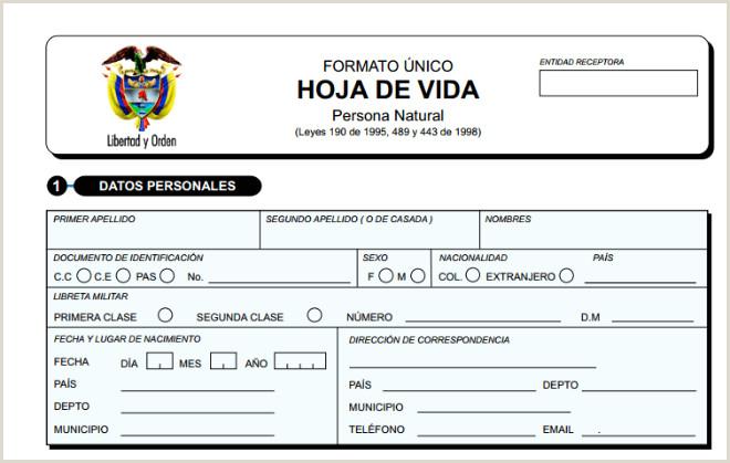 Formato Hoja De Vida Minerva Editable solicitud De Empleo Para Llenar