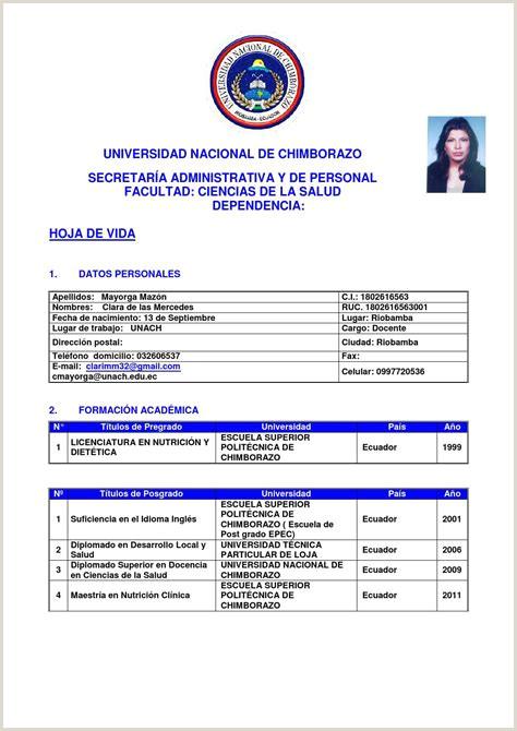 Hoja De Vida Hern 225 Ndez Galvis $ Tokoonlineindonesia