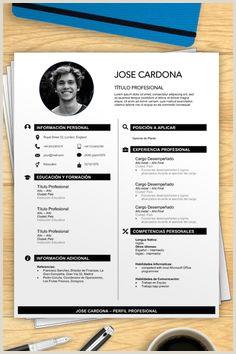 Formato Hoja De Vida Una Hoja 33 Mejores Imágenes De Modelos De Curriculum Vitae En 2019