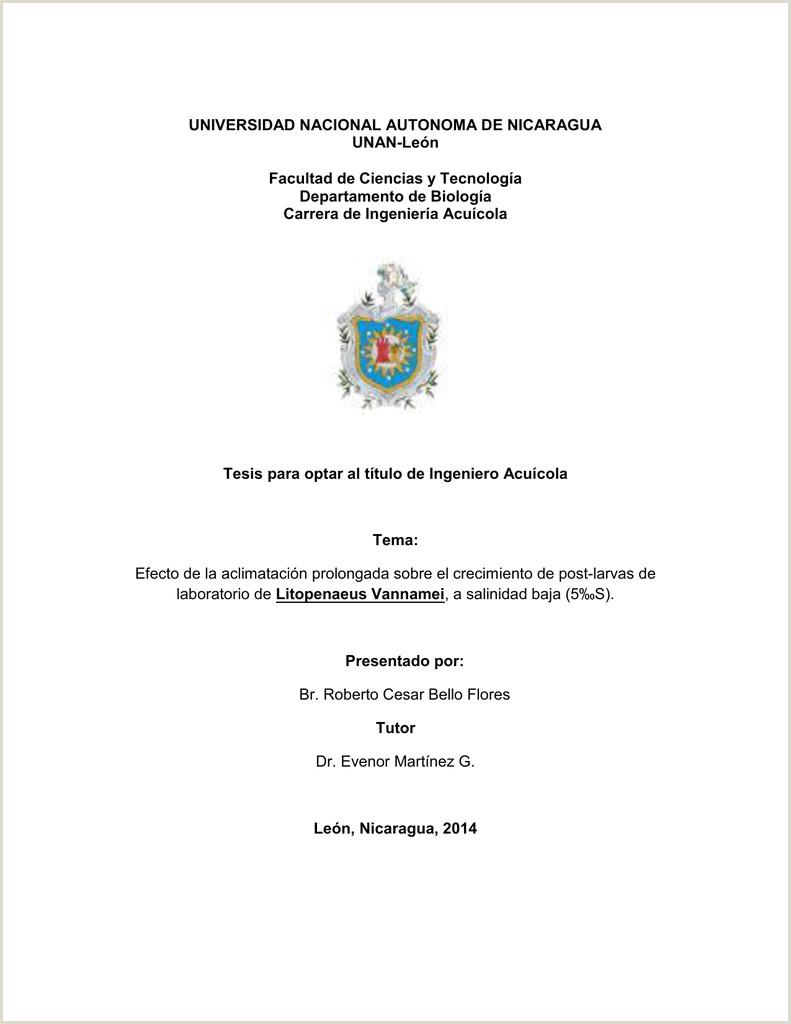 Formato Hoja De Vida Unal Universidad Nacional Autonoma De Nicaragua Unan