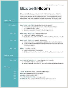 Formato Unico De Hoja De Vida Azul Más De 400 Plantillas De Cv Y Cartas De Presentaci³n Gratis