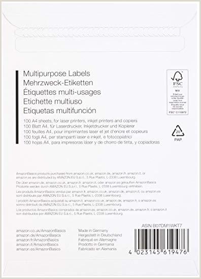 Formato Unico De Hoja De Vida Imprimir Amazonbasics Etiquetas De Direcci³n Multiusos 48 5mm X