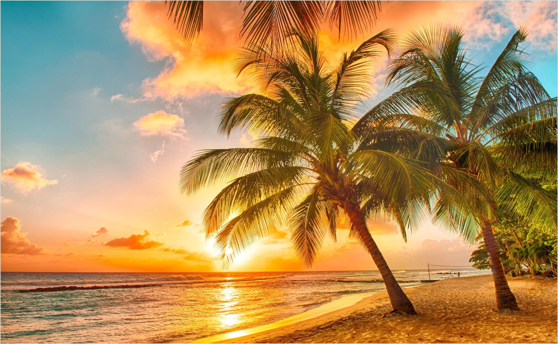 Formato único De Hoja De Vida Para Persona Jurídica (dafp) Free High Resolution Wallpaper Sunset
