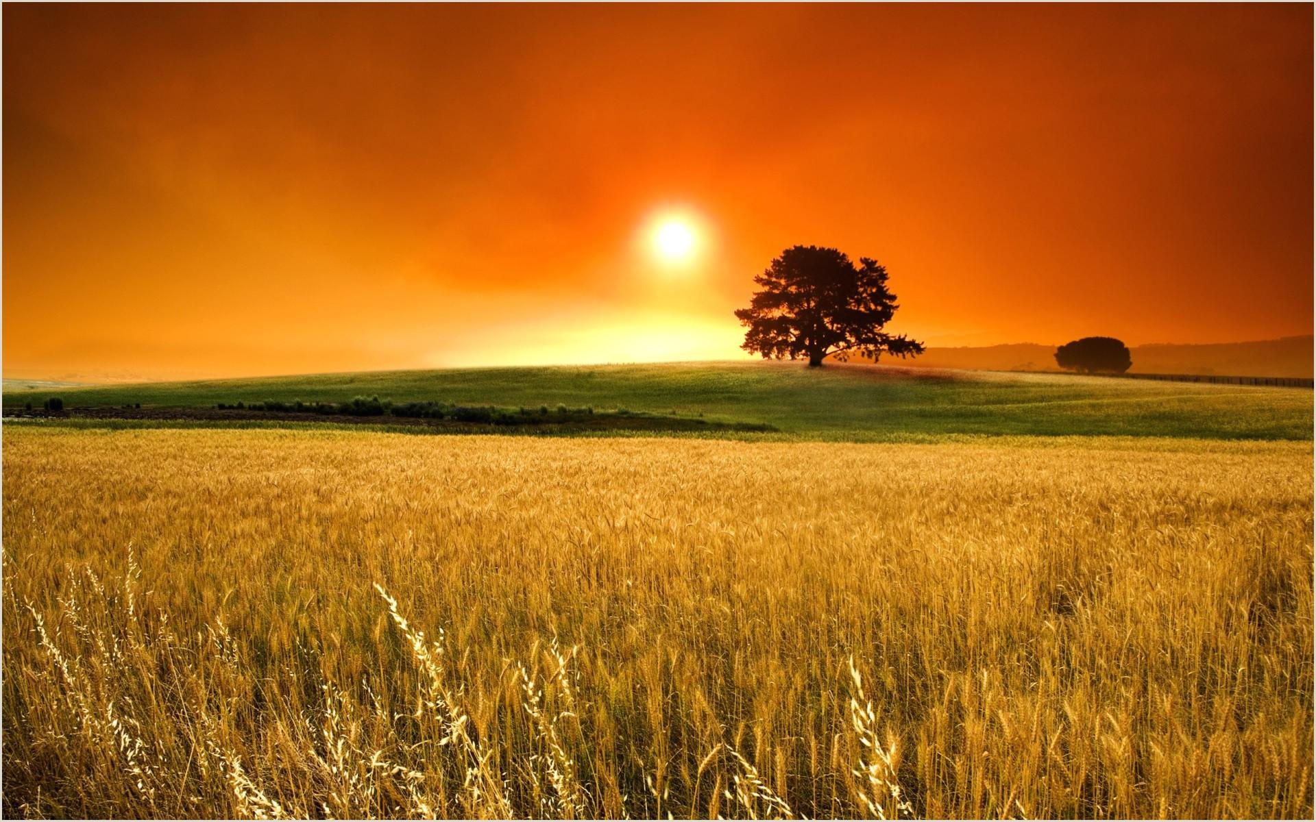 sunset full screen wallpaper hd Nature wa