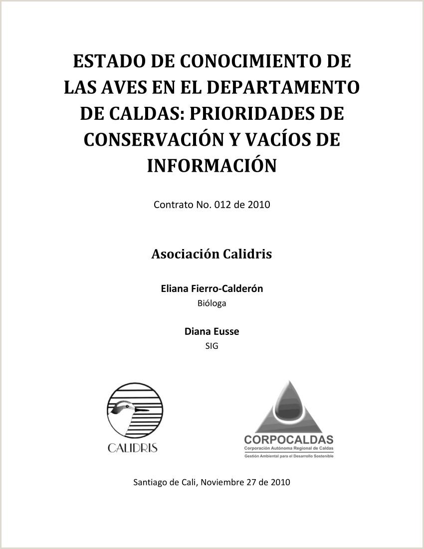 Formato Unico Hoja De Vida Alcaldia De Cali Pdf Estado De Conocimiento De Las Aves Del Departamento De