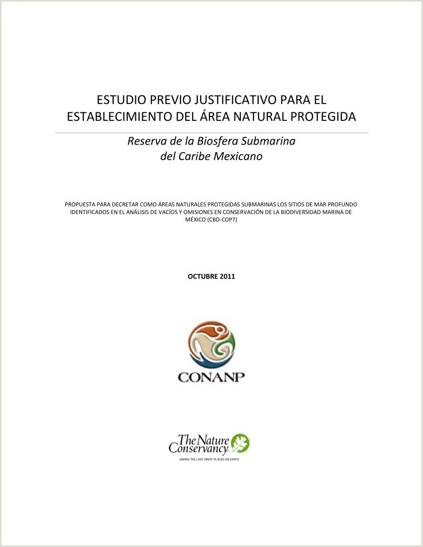 PDF Estudio previo justificativo para el establecimiento