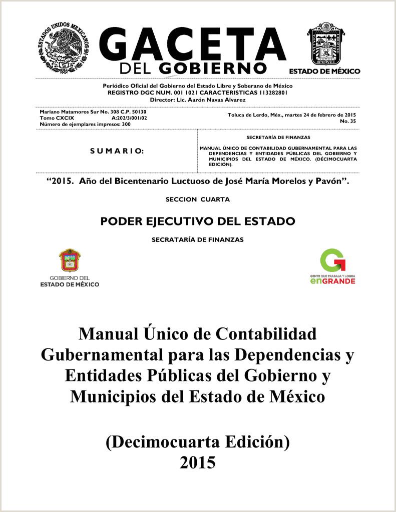 Manual šnico de Contabilidad Gubernamental para