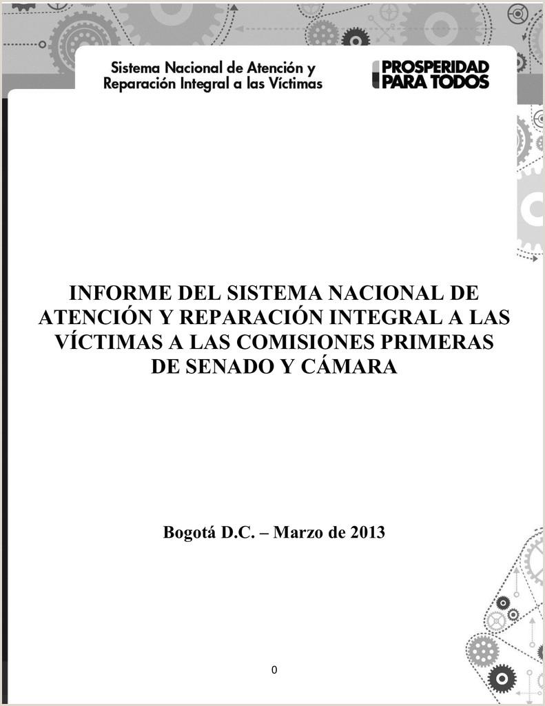 """INFORME DEL SISTEMA NACIONAL DE ATENCI""""N Y"""