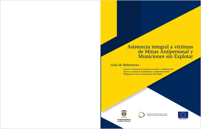 Asistencia Integral a Victimas de Minas Antipersonal y