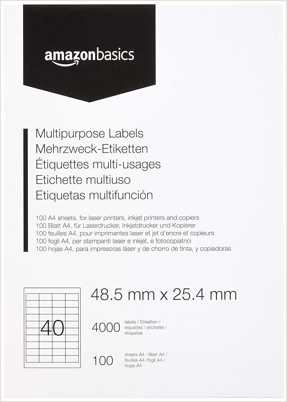 Formato Unico Hoja De Vida Sencilla En Blanco Amazonbasics Etiquetas De Direcci³n Multiusos 48 5mm X