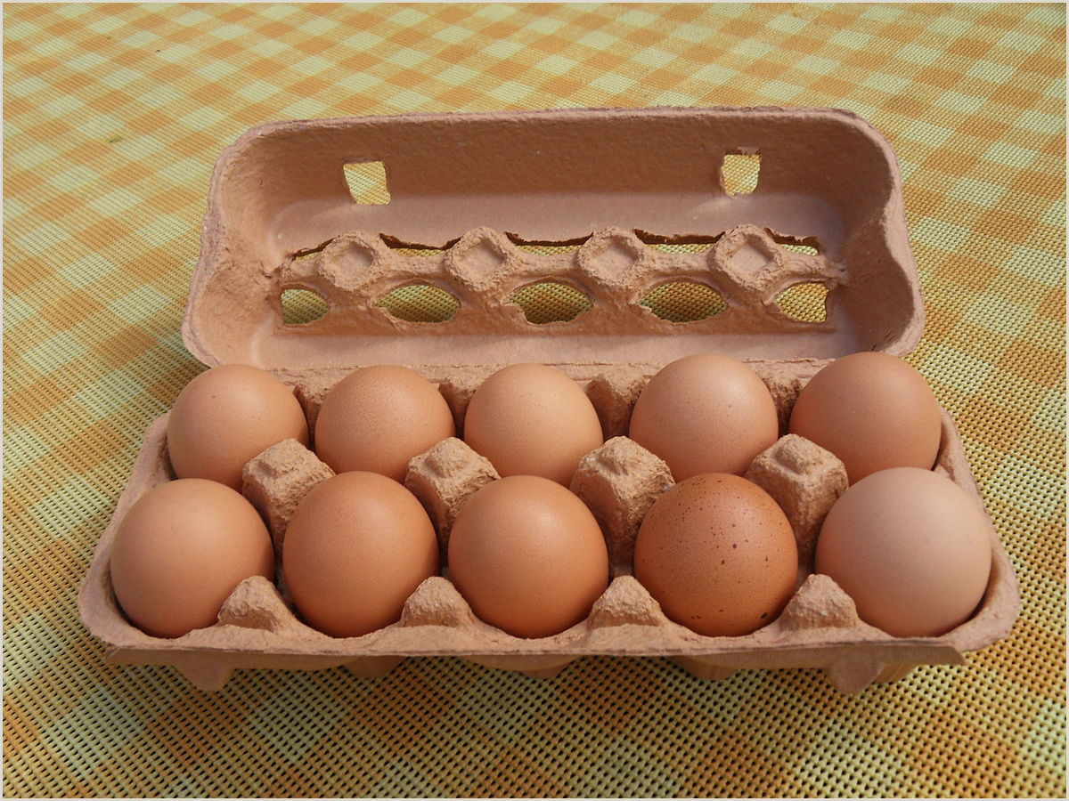 Free Egg Carton Label Template Egg Carton