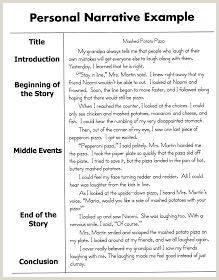 Personal Narrative Essay Sample 6th 8th ELA