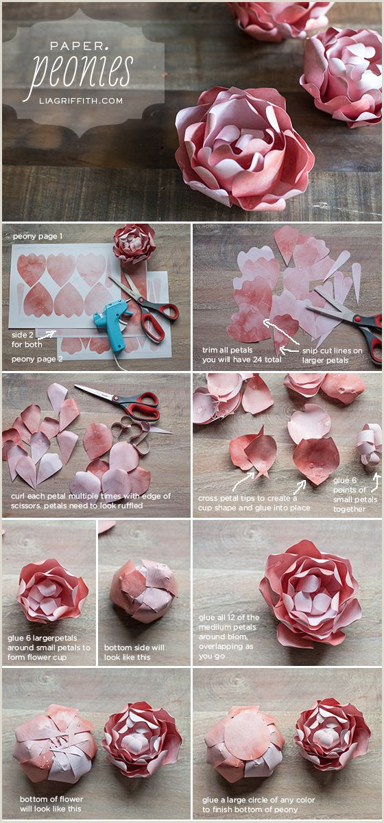 DIY Paper Peony Craft Tutorials