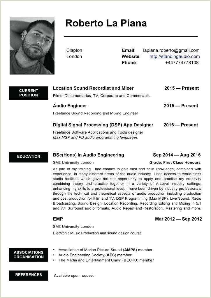 Example Luxury Sample Template Resume New Templates Hi Res