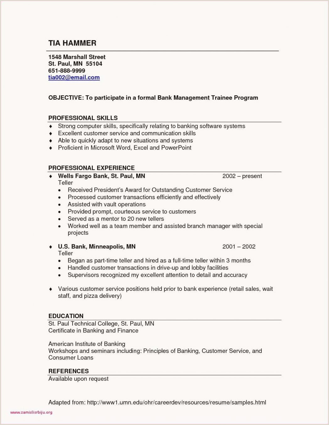 Fresher Cv Sample Doc Best E Page Simple Examples Beautiful Samples E