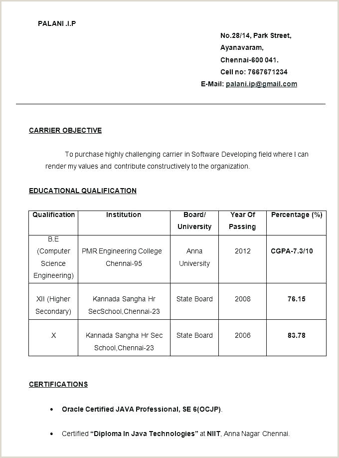 Fresher Resume format Computer Science Engineers Pdf format Resume – Paknts