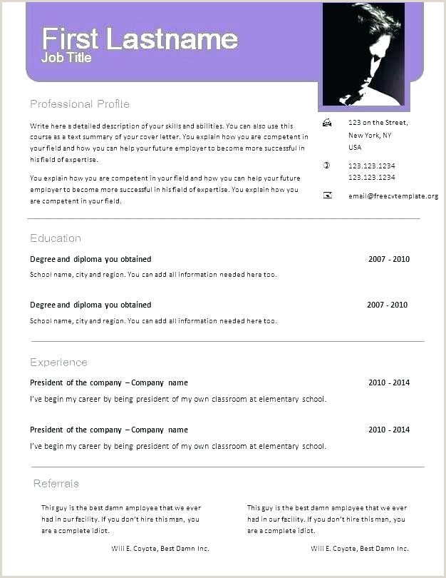 Fresher Resume Format Download In Ms Word 2007 Blank Resume Template Cute Format Download In Ms Word New