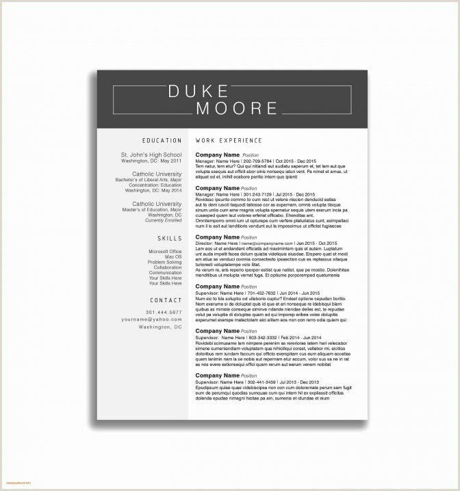 Fresher Resume format Download In Ms Word Free Resume format Doc Latest New Letter for Phd Guide Template
