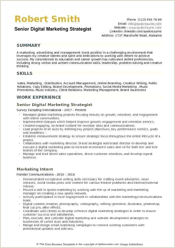 Fresher Resume Format Edit Digital Marketing Strategist Resume Samples Example Template