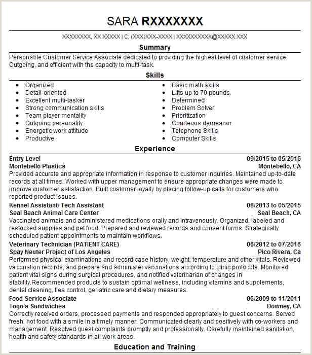 Fresher Resume format for Banking Eye Grabbing Entry Level Resumes Samples