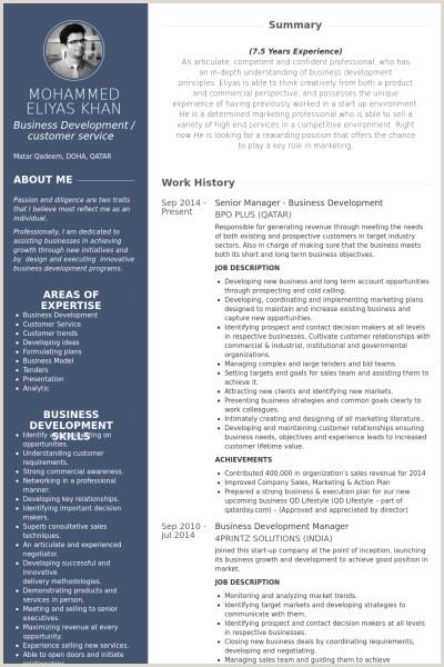 Fresher Resume Format For Business Development Senior Manager Business Development Resume Example