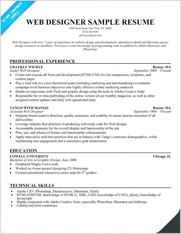 Fresher Resume Format For Graphic Designer 15 Format Of Resume For Fresher