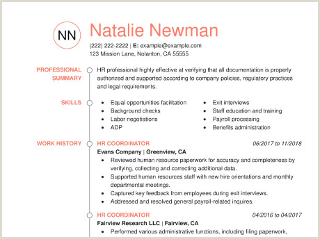 Fresher Resume Format For Sales Executive Amazing Human Resources Resume Examples