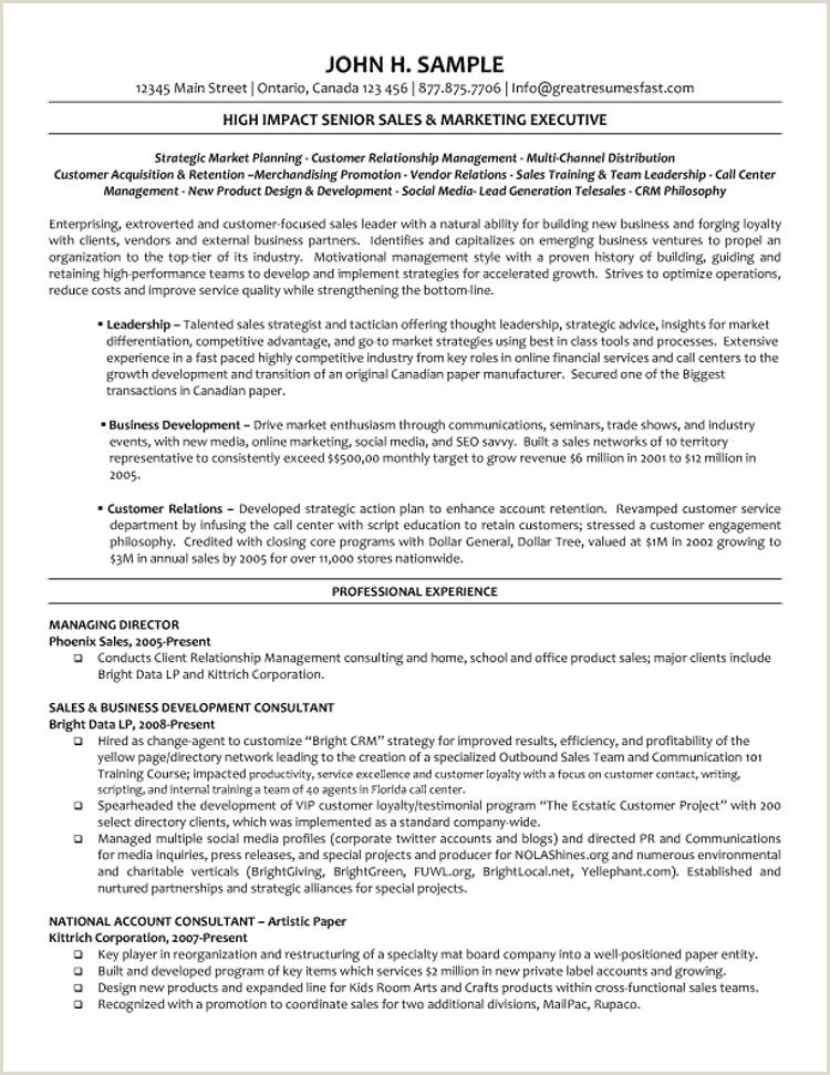 Fresher Resume format for Sales Executive Director Level Cv Examples