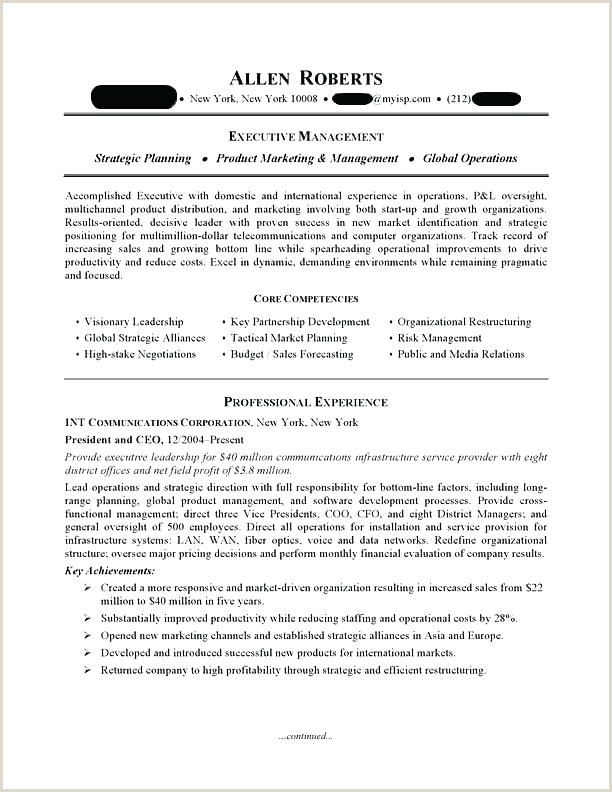 Fresher Resume Format For Sales Executive Executive Resume Templates Word – Growthnotes