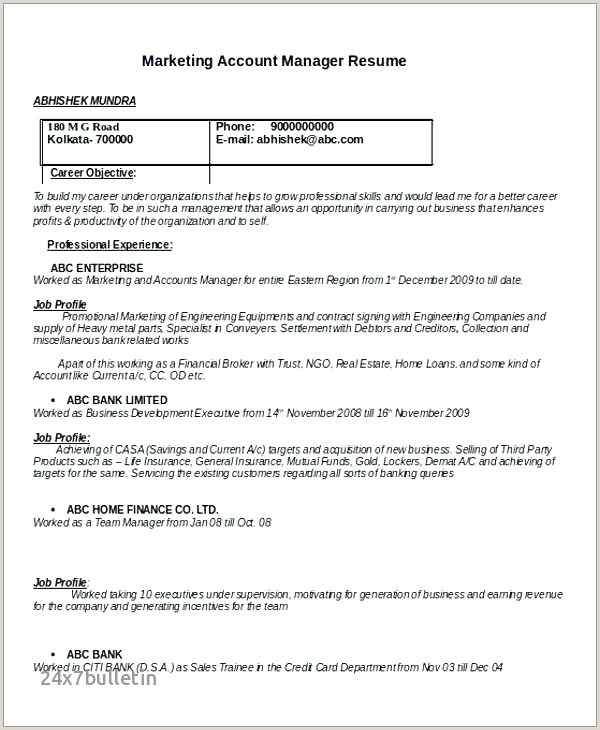 Fresher Resume Format For Sales Executive Resume For Sales Executive – Thrifdecorblog