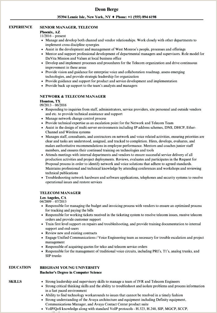 Fresher Resume Format For Sales Executive Sales Executive Resume Examples – Emelcotest