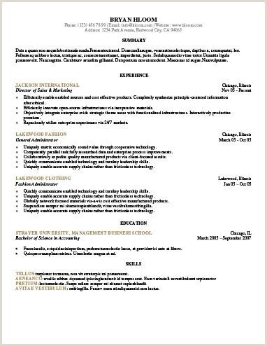 Fresher Resume format for System Administrator 30 Basic Resume Templates