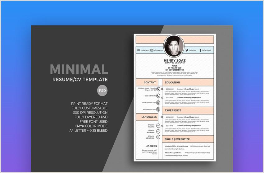 Fresher Resume Format For Web Developer 19 Best Web & Graphic Designer Resume Templates For 2019