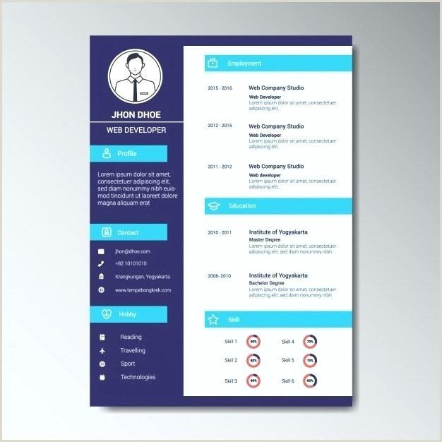 Fresher Resume Format For Web Developer Web Resume Template