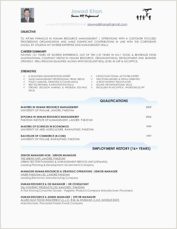 Fresher Resume Format In Excel Sample Resume For Sap Pp New Sap Pp Fresher Resume