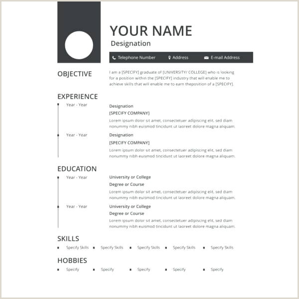 Fresher Resume format In Ms Word Resume format Free – Paknts