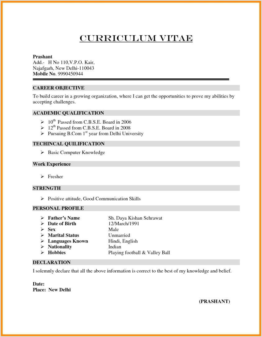 Fresher Resume format India format for German Cv – Ndtech