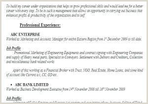Fresher Resume Format It Professional Sample Banker Resume Examples Sample Resume Bank Job Fresher