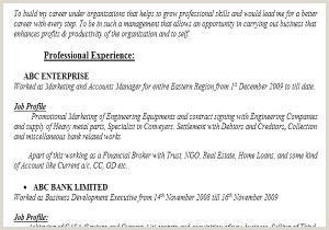 Fresher Resume Format Pdf File Cv Examples Pdf Simple Cv Graphic Designer Example Ekla