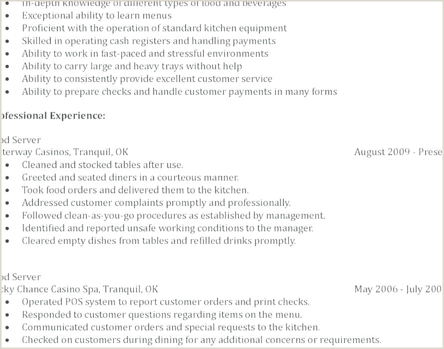 Fresher Resume format Word File Standard Professional Resume format – Englishor