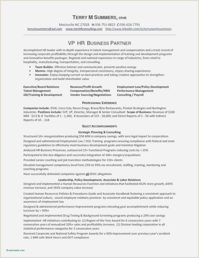 Freshers Resume Format For Software Jobs Software Developer Resume Template