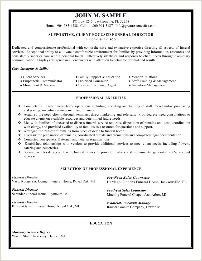 Examples of Amazing Resume Formats 2020