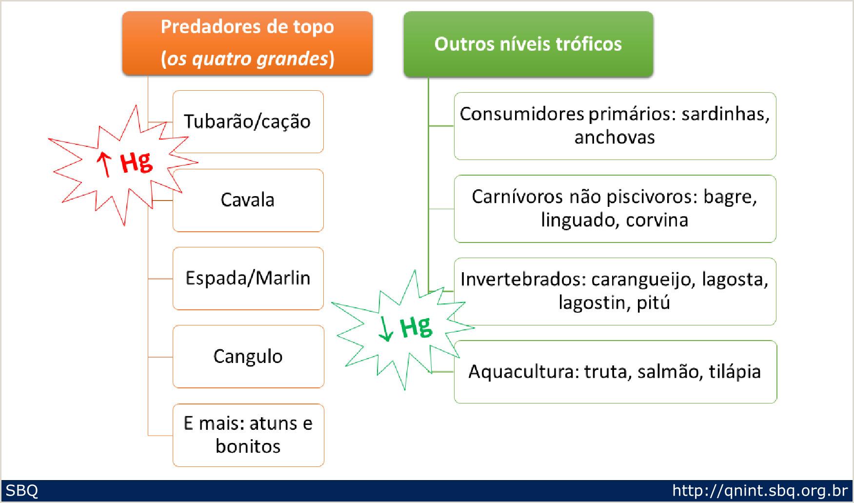 A Hist³ria sob o Olhar da Qumica As Especiarias e sua