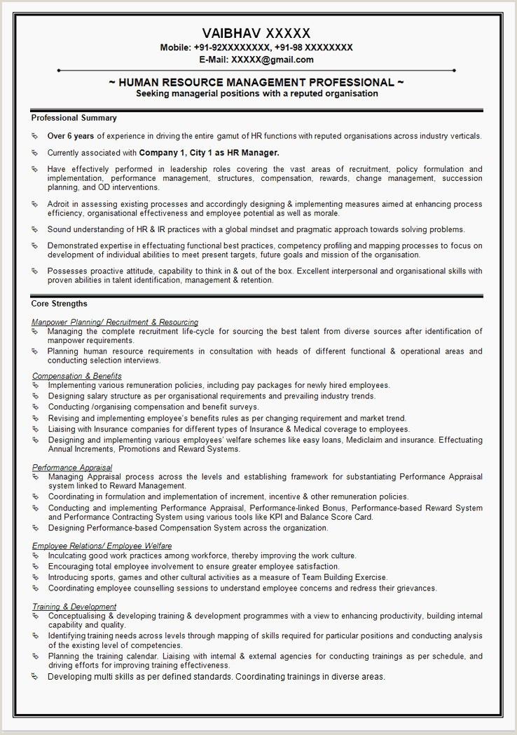 Global Standard Cv format 73 Functional Resume Sample