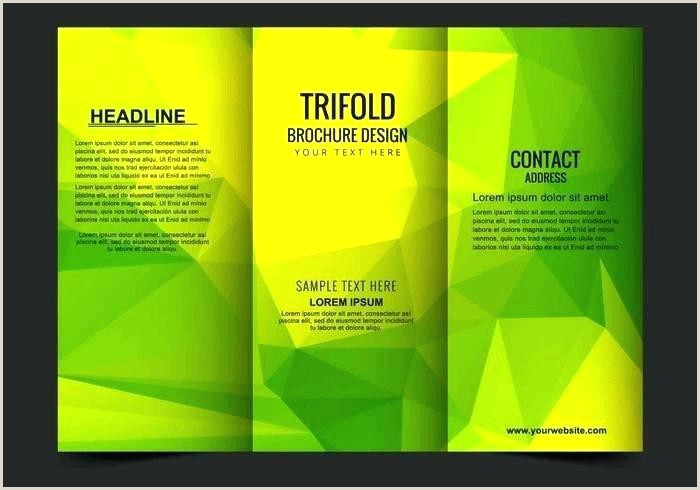 Double Sided Brochure Template Google Docs Clean Publisher Free