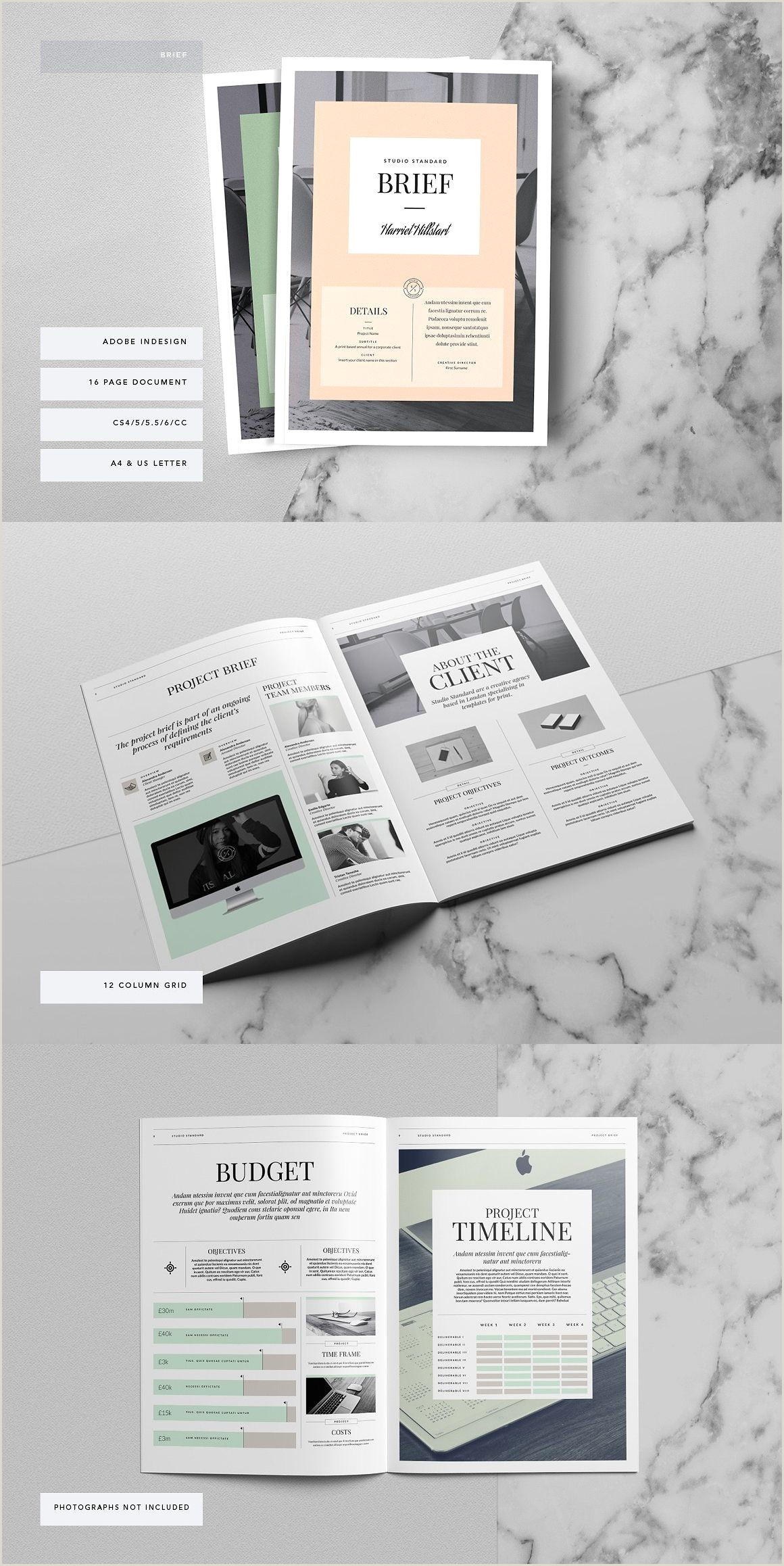 Kingsley Brief Template Graphic Design