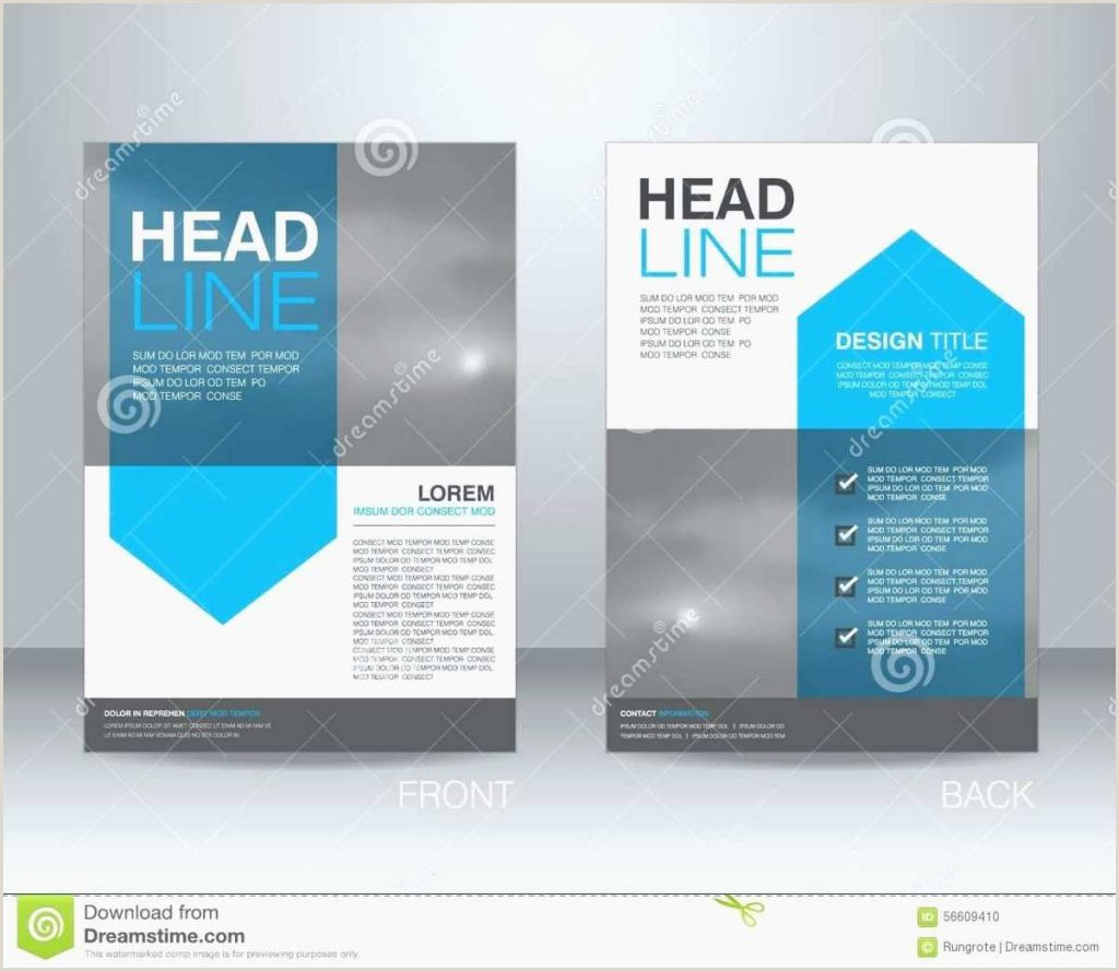 Graphic organizer Templates for Microsoft Word Campaign Informational Flyer Template Flat2 Microsoft Word