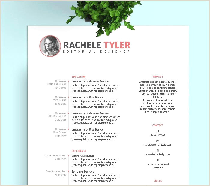 Cv Gratuit Word Exemple ¢Ëœ 46 Ms Word Resume Template