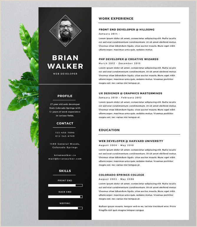 Headshot Templates Free Download the 17 Best Resume Templates for Every Type Of Professional